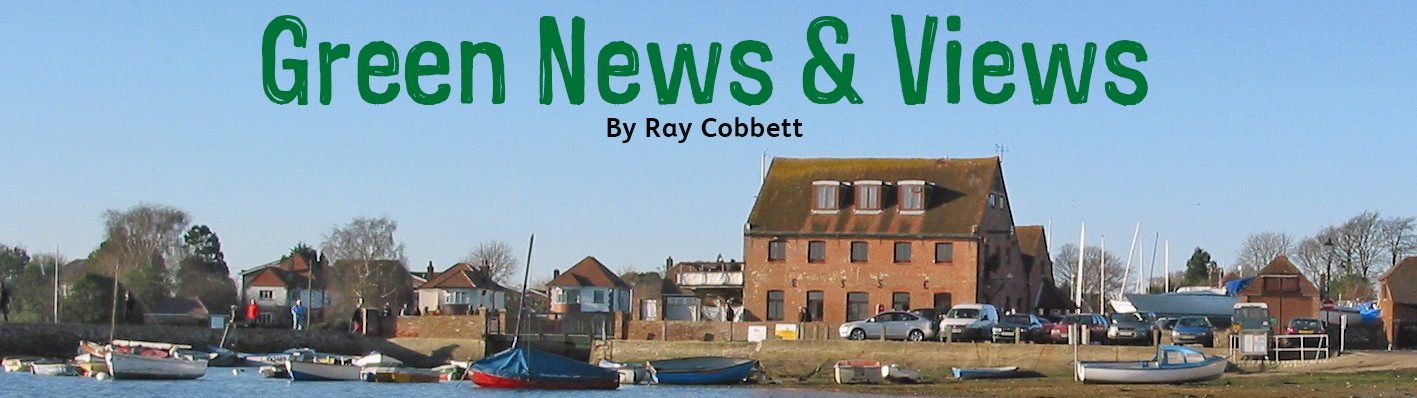 Green News & Views