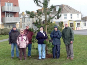 Havant Tree Volunteers