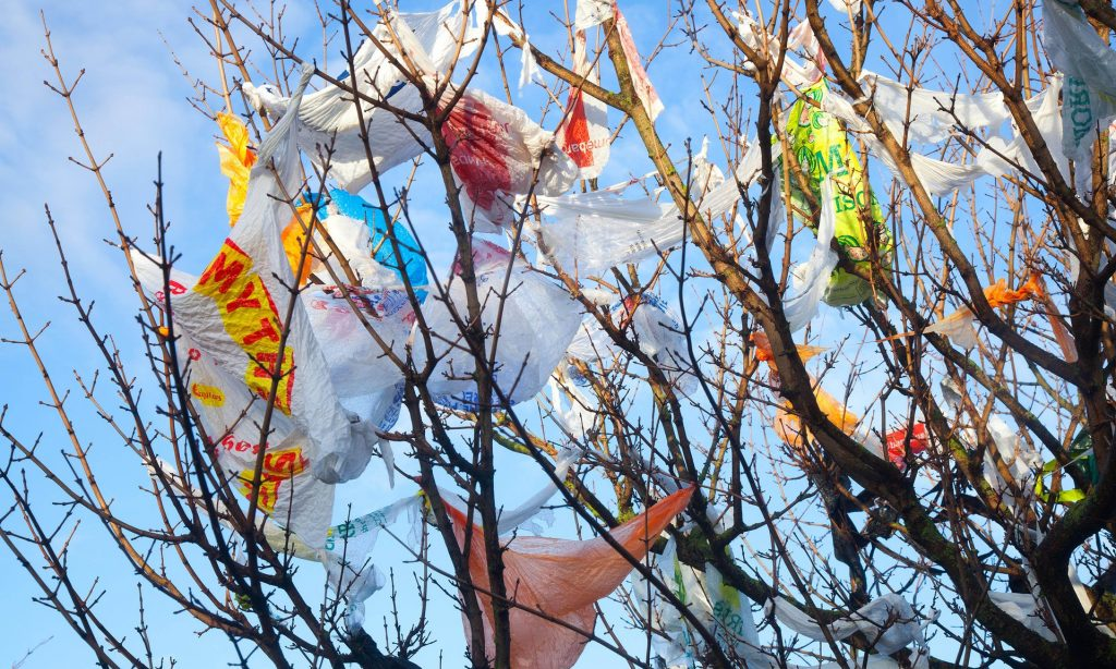 Use your own two hands instead of plastic bags if you've bought just a few small items. Photograph: Mar Photographics/Alamy