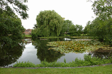 The West Lake at Portsmouth Water in Havant